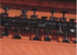 rotore multiagressivo.png