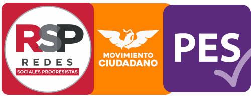 Hay más opciones que PRI, PAN, PRD y Morena, estos partidos tienen propuestas