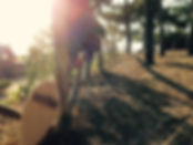 Bodysurfing in portugal.jpg
