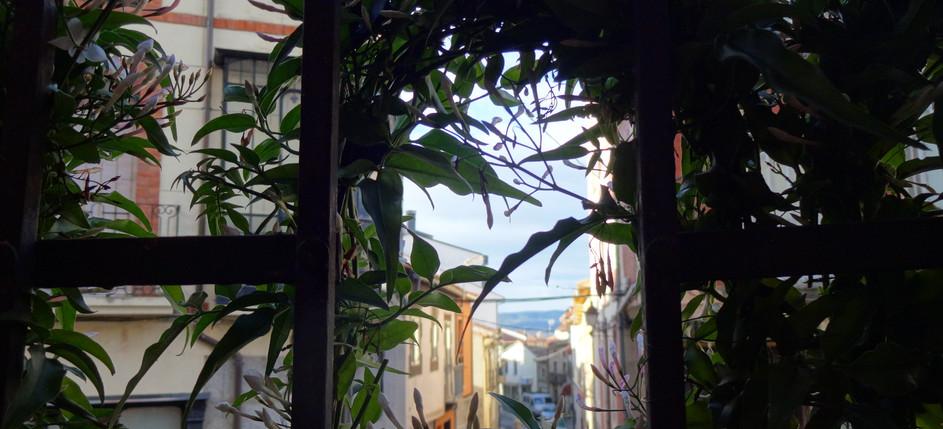 Vistas desde Balcón Habitación Matrimonio