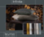 Infinite Foto Staalboek.png