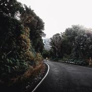road to taranaki.jpg
