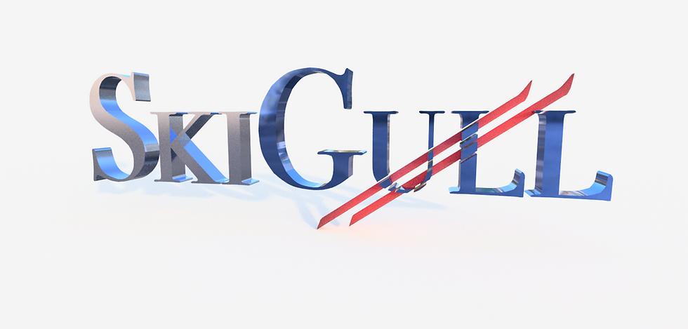 Skigull logo v25.png