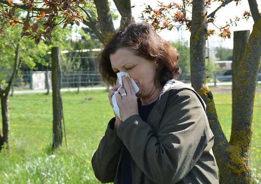 alergia-senna hrema.jpg