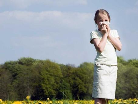 Алергиите имат комплексен характер и правилната терапия играе ключова роля