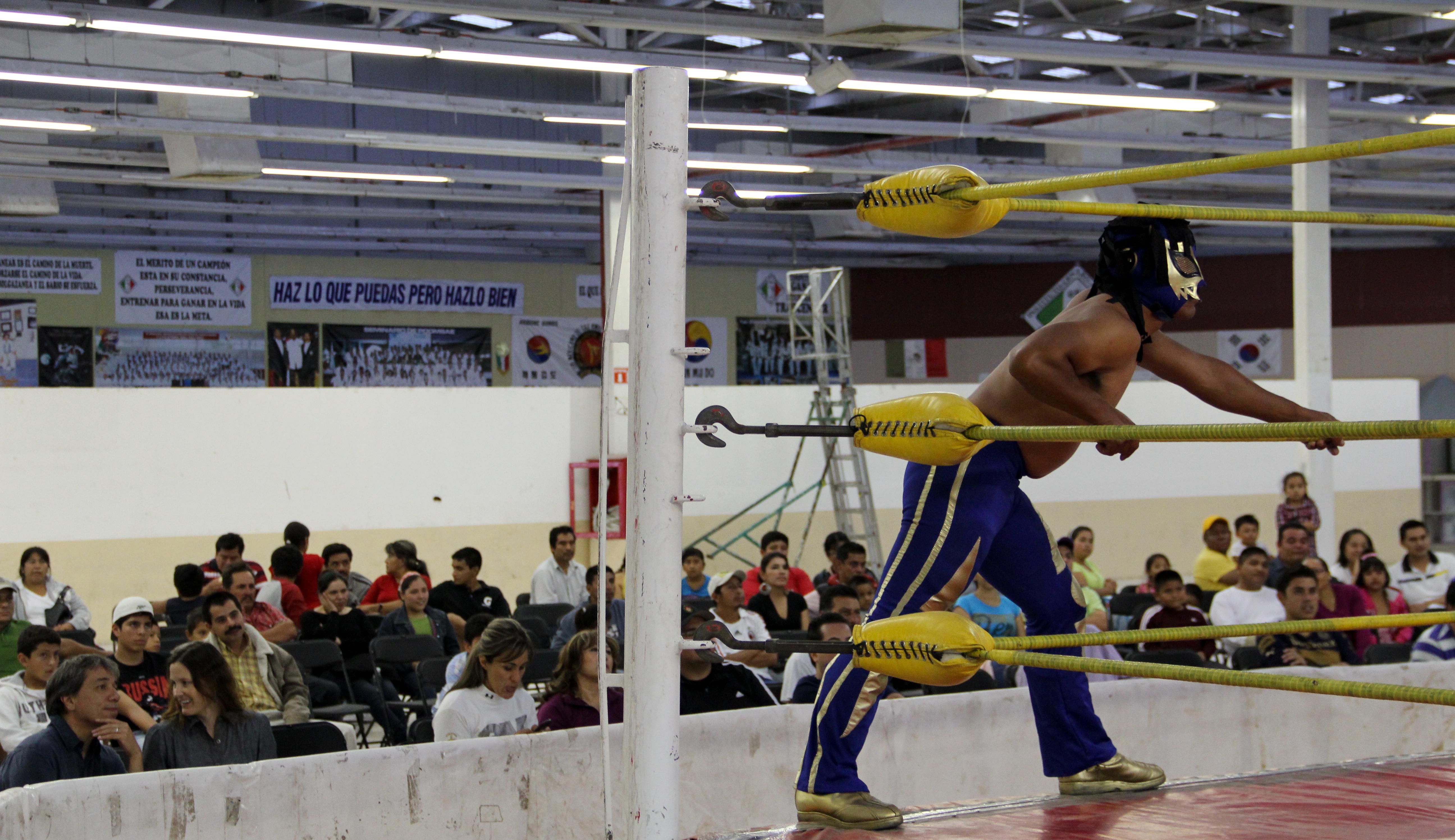 Lucha Libre II