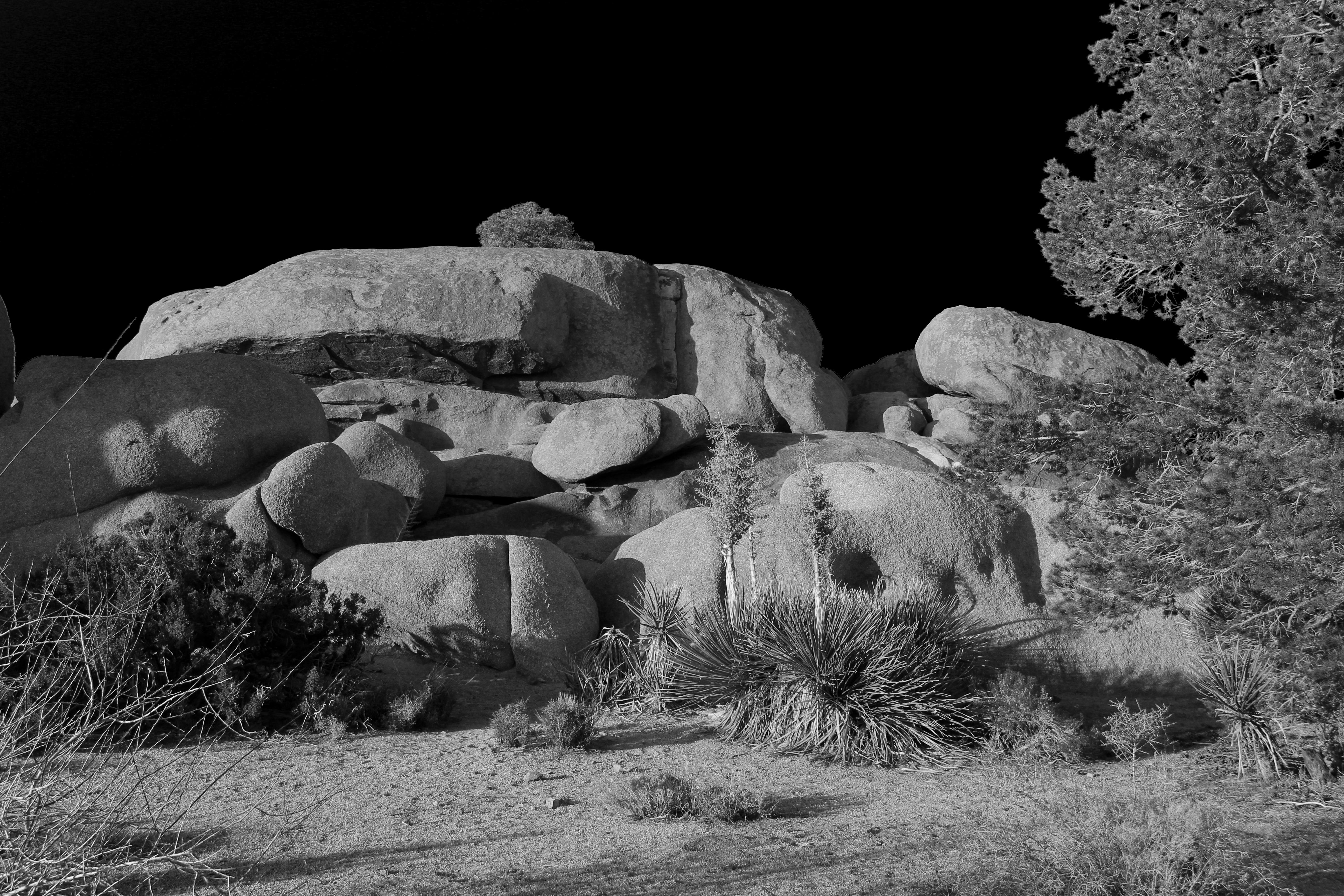Desert Set3