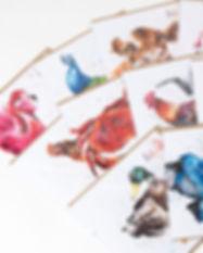 Card-mix-banner.jpg