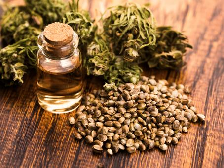 Fibromialgia e a cannabis medicinal
