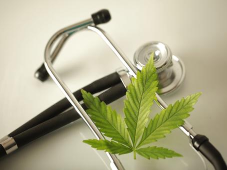 Cannabis medicinal melhora a qualidade de vida de pacientes oncológicos