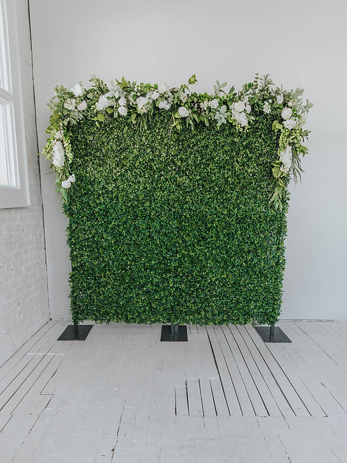 Boxwood full wall