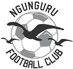 Ngunguru FC - Club Logo.png