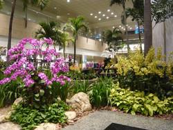 awesome-interior-landscape-design-