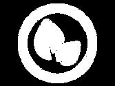 icon-nontoxic.png