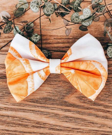 'Zesty' Bow Tie