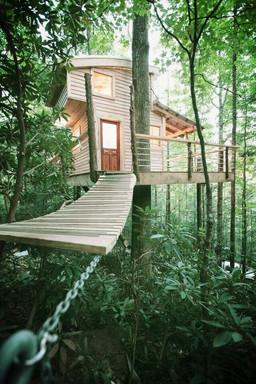 Blue Ridge Farmhouse Treehouse
