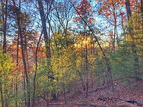 Mountain Sunset Views in Blue Ridge GA
