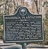 Shuttle Buses to Magnolia Plantation