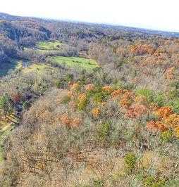 Blue Ridge GA Treehouses Location