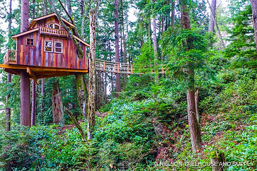 Blue Ridge GA Treehouse Rental Nelson Treehouses
