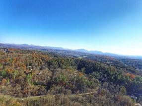 Georgia Mountain Treehouse View