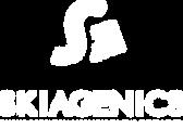 Création logo nice