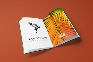 mockup-of-an-open-book-on-a-solid-color-surface-1344-el.png