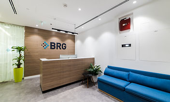 BRG-2.jpg