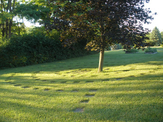 A Prayerful Walk in our Labyrinth