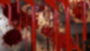 Screen Shot 2020-04-16 at 1.05.34 PM.png