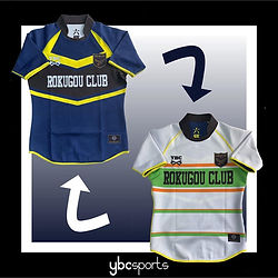 reversible jersey.jpg