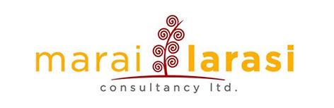 MLConsultancy logo.jpg