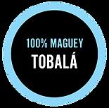 100% Maguey Tobala