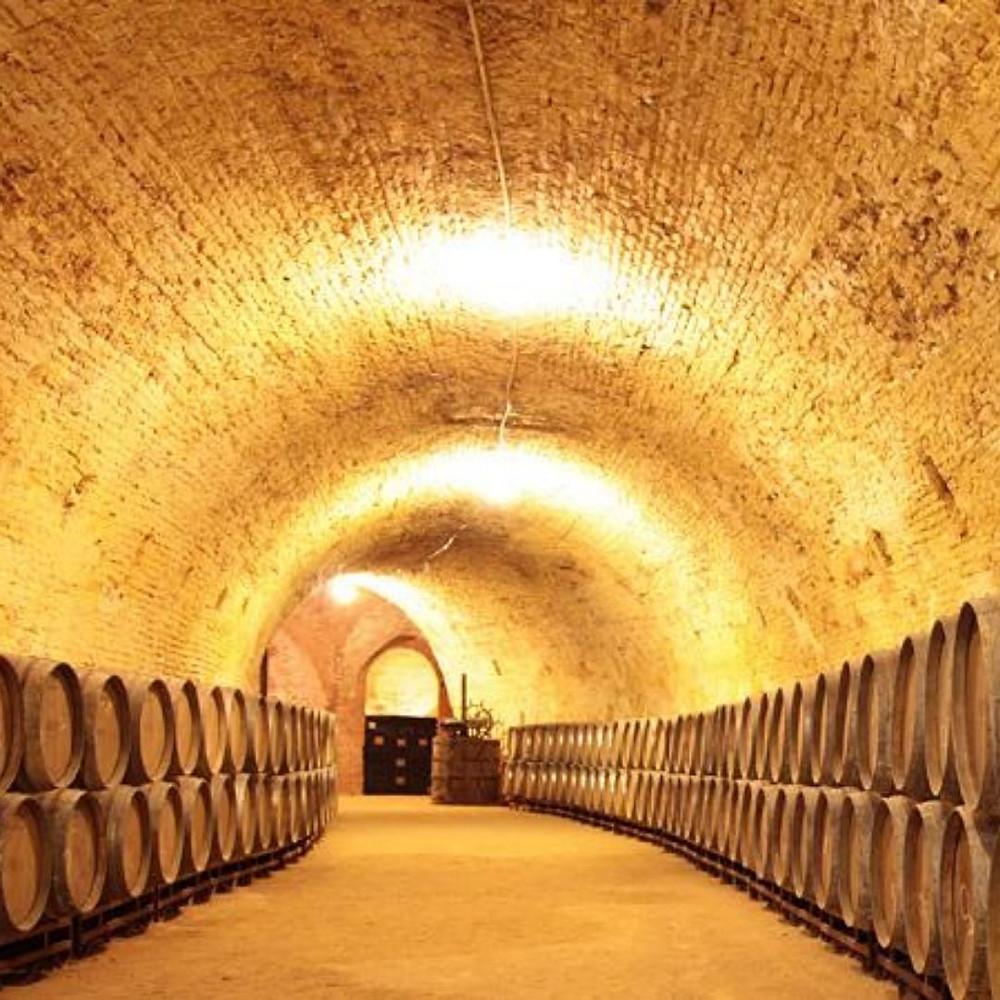 Aranjuez, Toledo, Wine Experience, Madrid. Royal Winery.