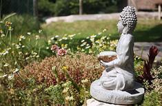 ssr lake buddha.jpg