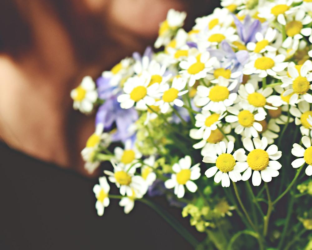 flowers, daisies, wedding bouquet