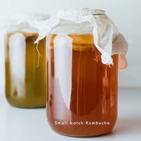 Small Batch Kombucha