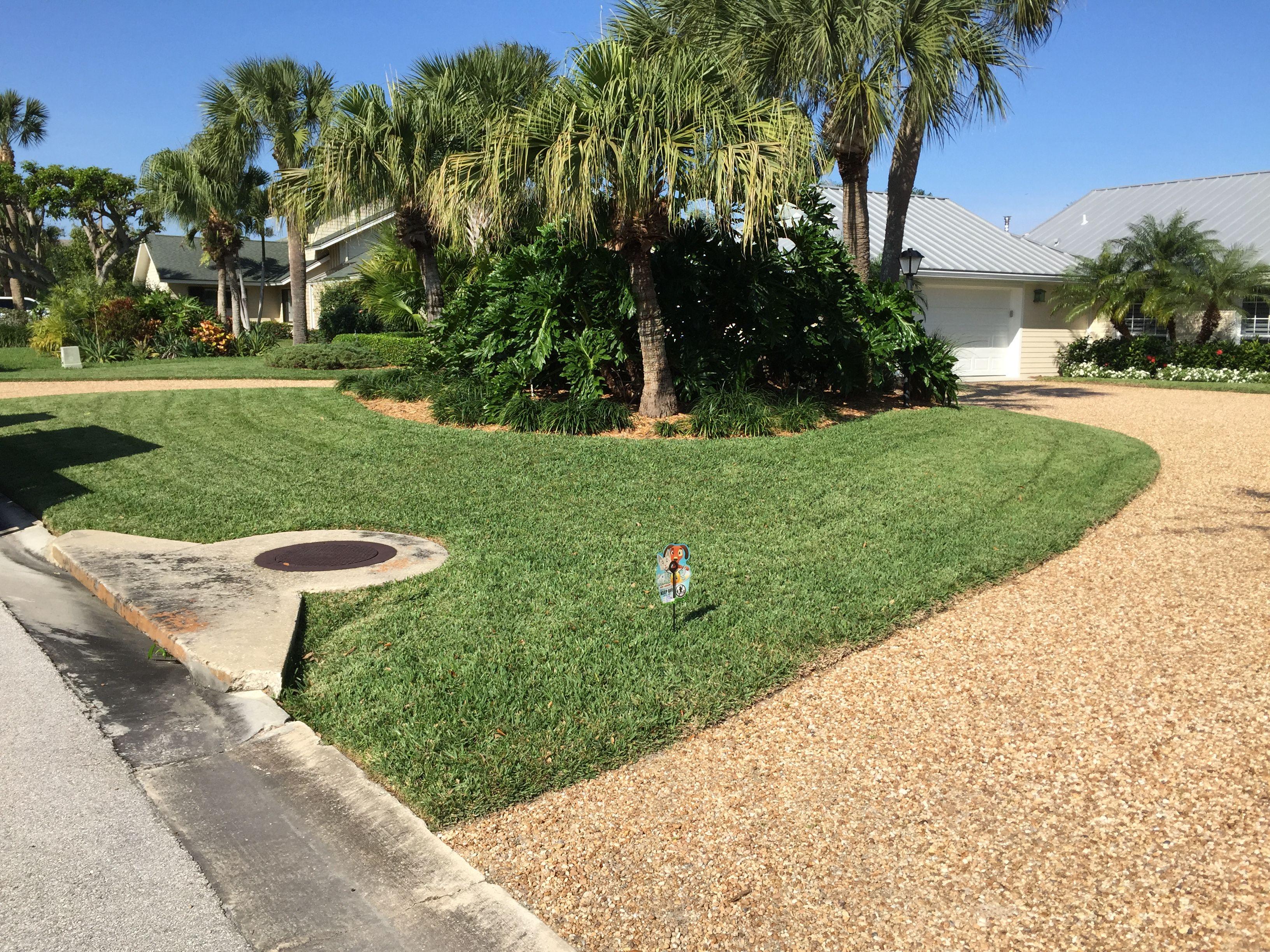 Spot a HALO lawn!