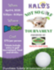 Not So Golf Flyer.png