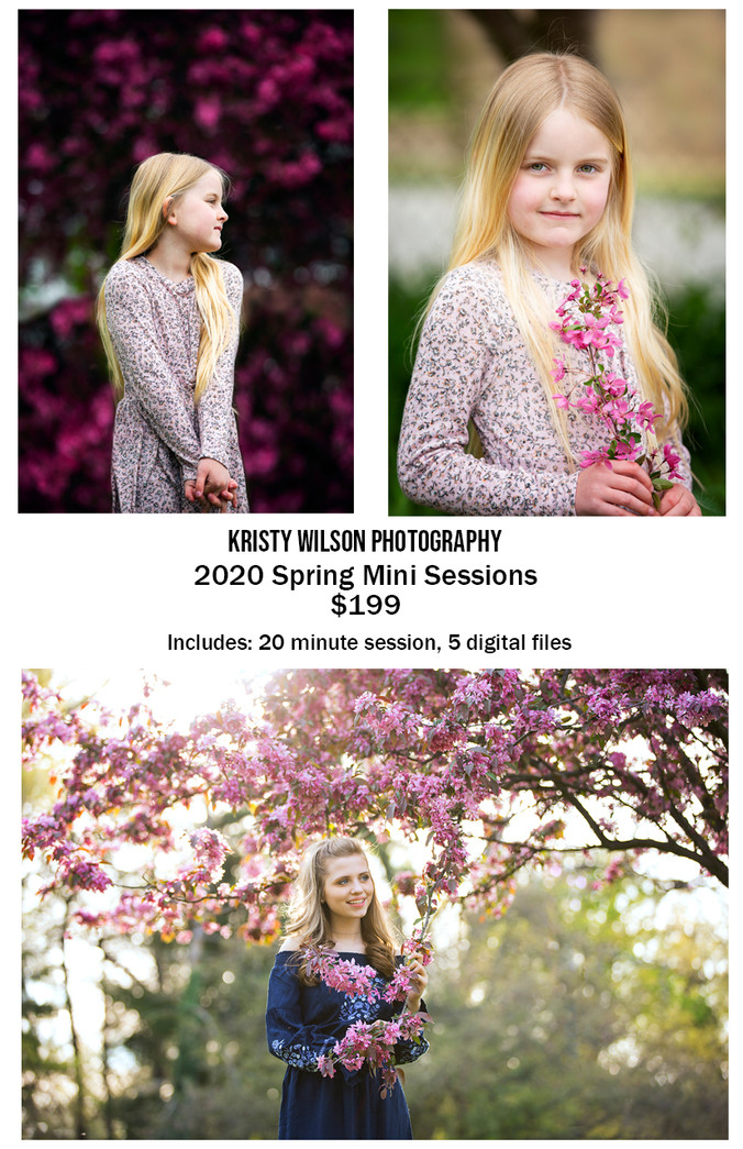 Spring Mini Session | Pittsburgh, PA | Kristy Wilson Photography