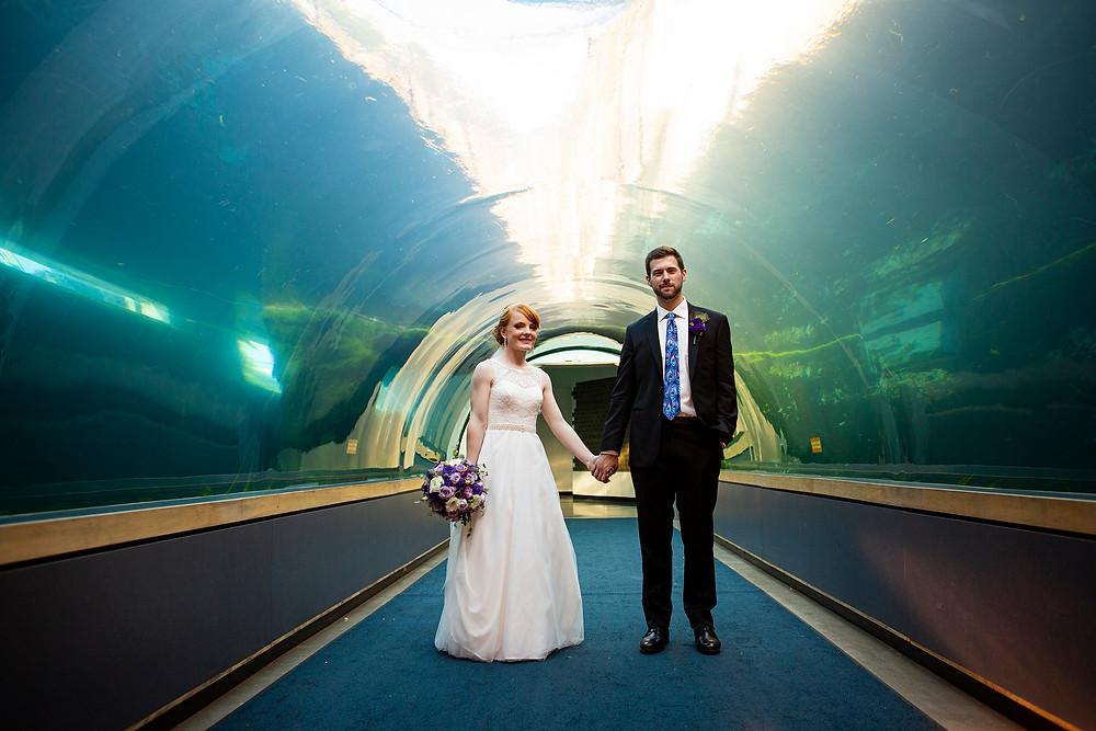 PPG aquarium Pittsburgh Zoo