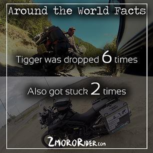 After Trip Facts - Tigger falls fact.jpg