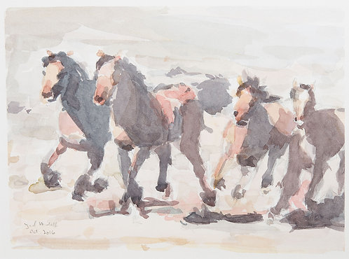 Horses, watercolour 2016