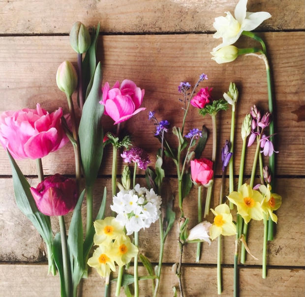 Constance Rose Bouquets