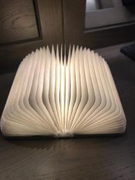 Norfolk Living - Book Light £24