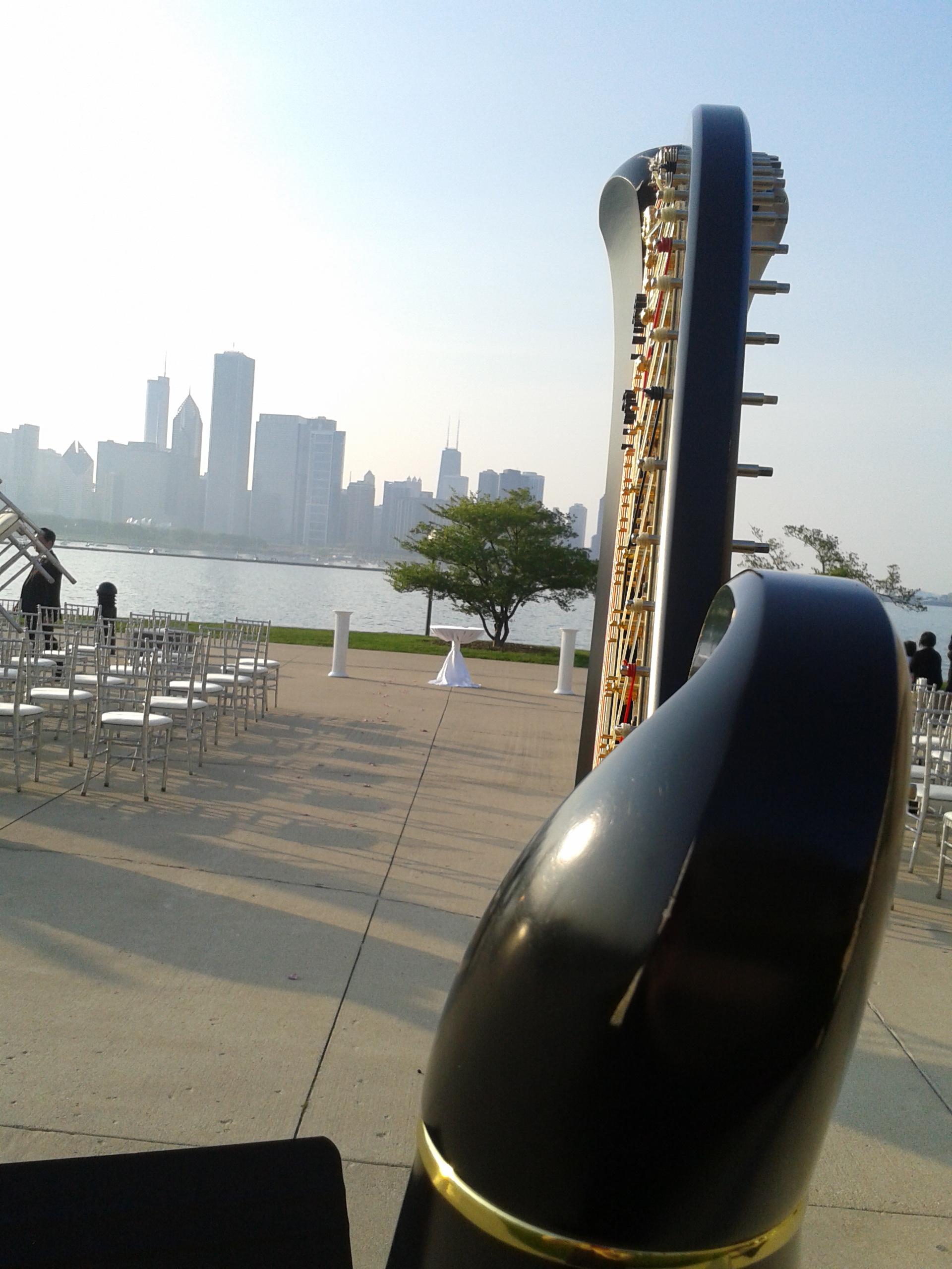 Chicago Skyline @ the Adler