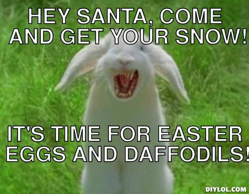 rabbit-meme-generator-hey-santa-come-and-get-your-snow-it-s-time-for-easter-eggs