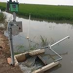 Automated irrigaton