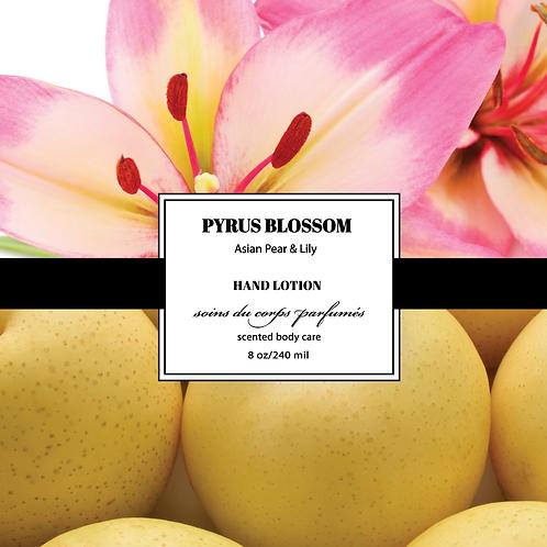 Pyrus Blossom  8oz/236ML