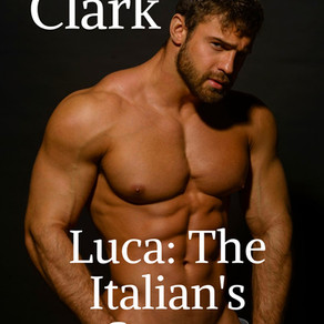 Luca: The Italian's Secret